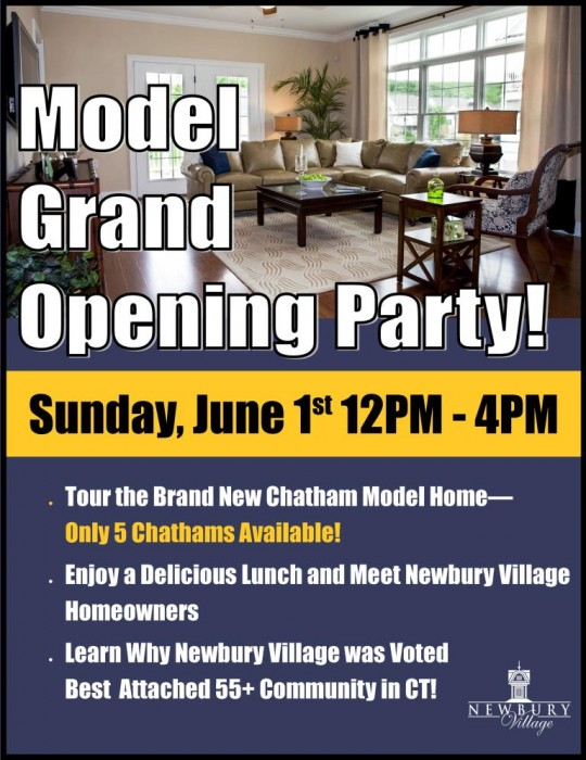 Model Grand Opening Party - June 1st